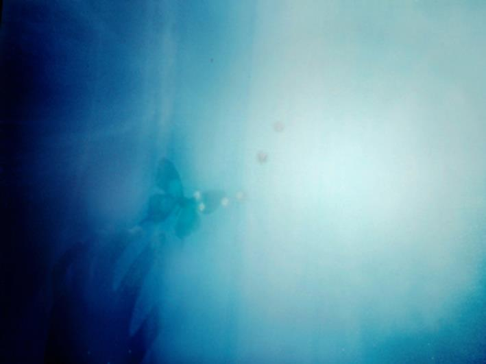 野坂実生がGallery Hommage 3周年記念展示会に参加します