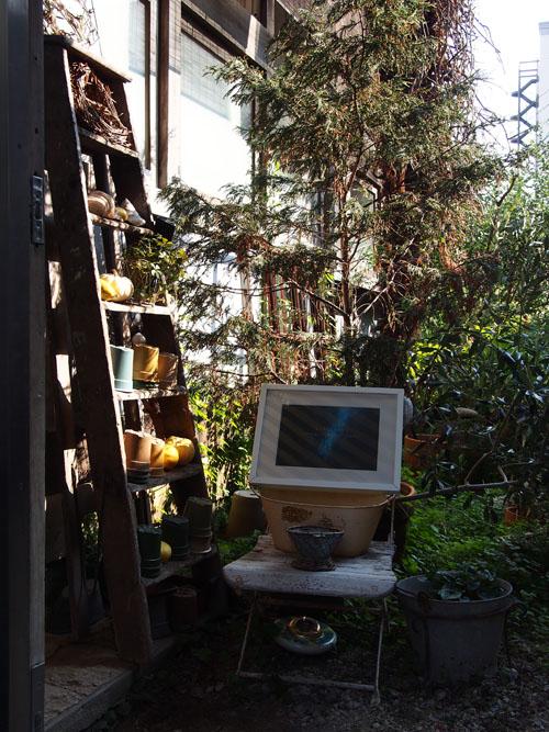 梯子に置かれた植木と、ウェルカムブルー。